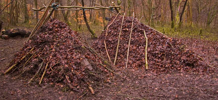 Although debris shelters can be created with natural materials, they are not a low impact approach to camping. Such shelters should always be dismantled after use. - © 2017 - Gary Waidson - Ravenlore